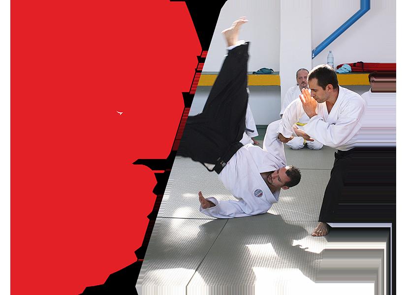 Curs de Aikido pentru copii și adulți (14+ ani), cursuri începători și avansați, lecții aikido, eficiență și armonie, arte marțiale, autoapărare, echilibru interior, tehnici cu mâna liberă și arme, tehnici de aruncare, imobilizări, grupe aikido începători, București, Yoshinkan Aikido, Morihei Ueshiba, Gozo Shioda, Radu Niță, Mihai Zop